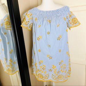 Zara Trafaluc Striped Blue Dress with Embroidery